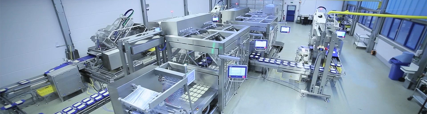 Bag Powder Packaging Production Line